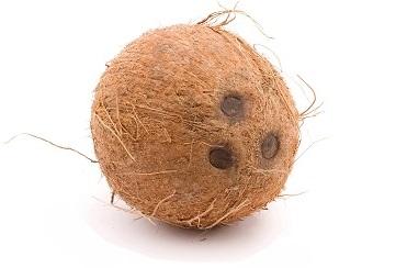 coconuts-6