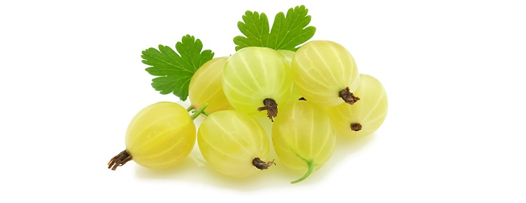 gooseberries-5