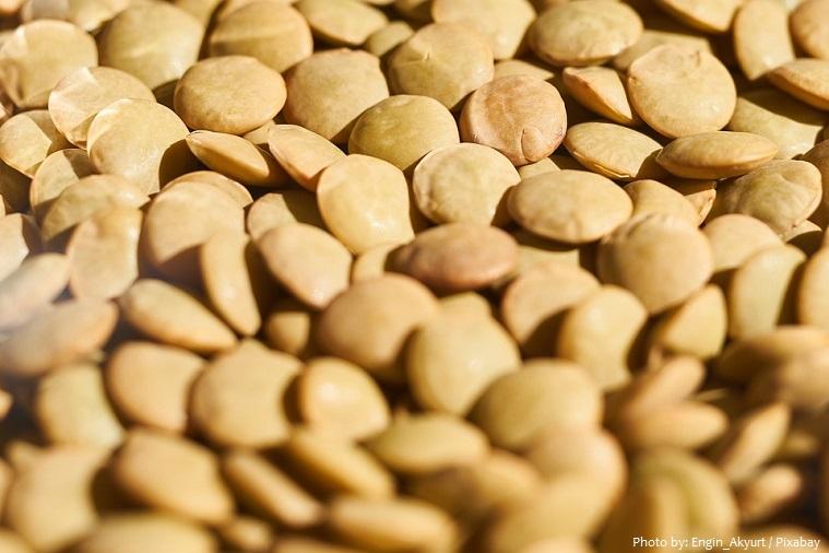 lentils-2