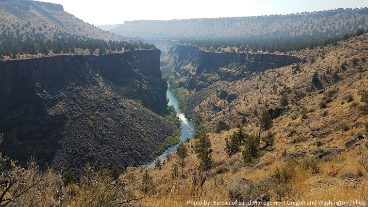 miles canyon basalts