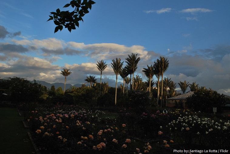 josé celestino mutis botanical garden