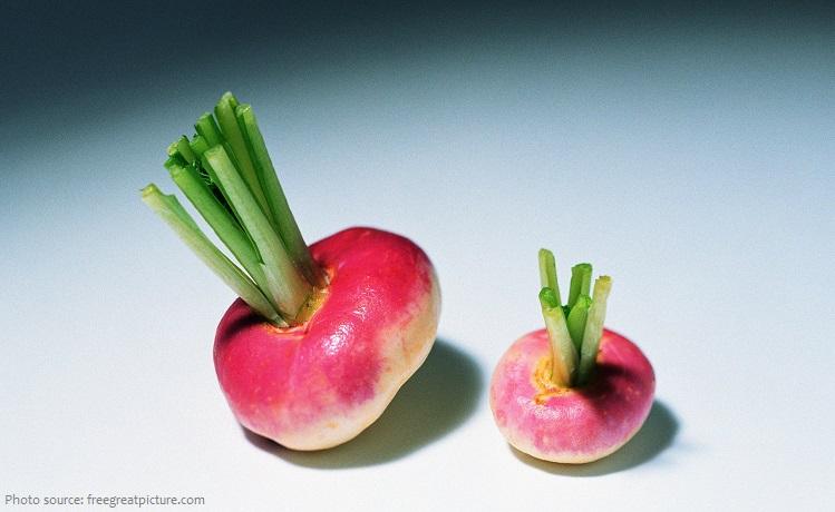 turnips-4