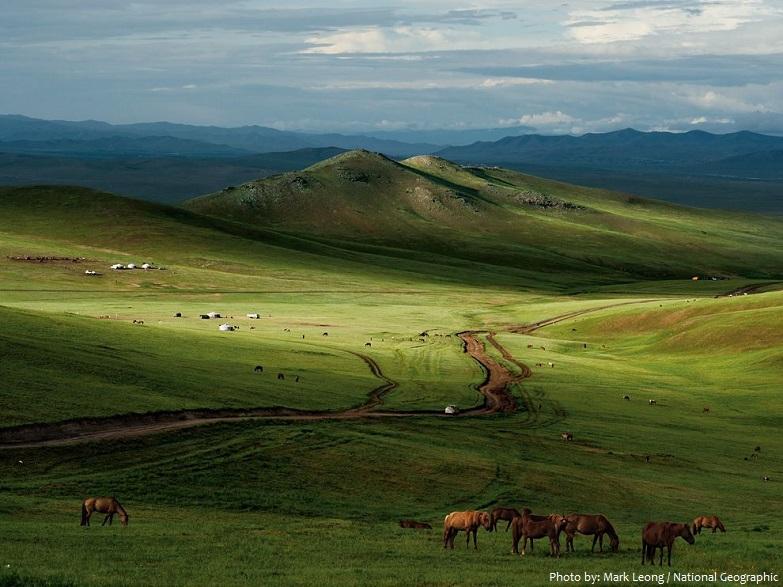 steppe-5