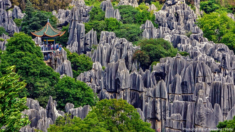 stone-forest-2