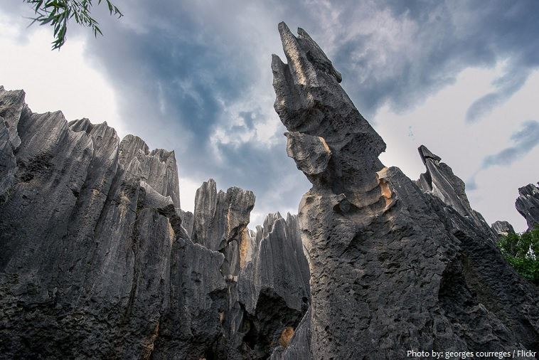 stone-forest-4