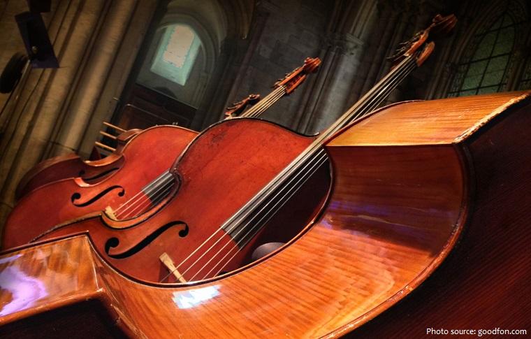 double-bass-3