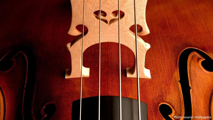 double-bass-5